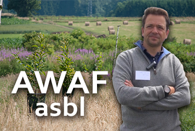 Interview de l'Association Wallonne pour l'Agroforesterie
